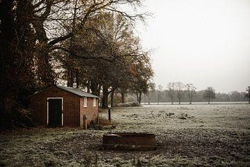 Eiseskälte in Twente von Holly Klein Oonk