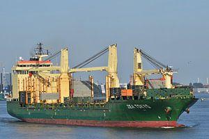 Zea Tokyo dans le port