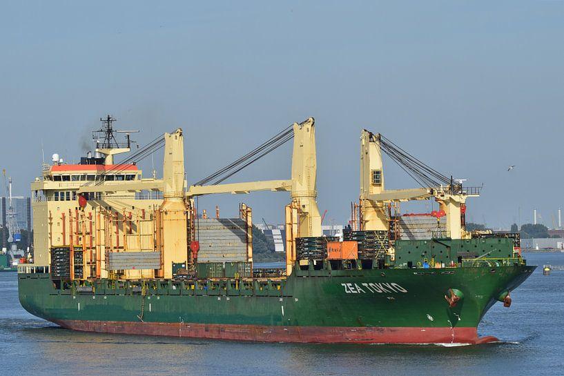 Zea Tokyo dans le port sur Piet Kooistra
