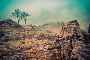 Serra da Estrela Portugal 3 von Elles Vennix