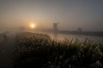Fräse im Kinderdijk von Moetwil en van Dijk - Fotografie