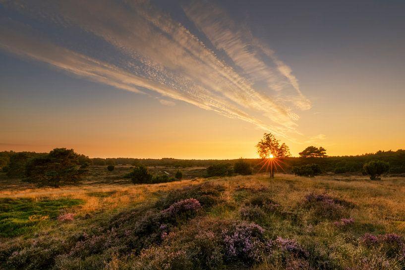 Zonsondergang op de bloeiende heide van Karla Leeftink
