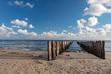 paalhoofden kust zeeland zoutelande van anne droogsma