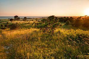 Insel Mön Dänemark . Sonnenuntergang am Aborrebjerg