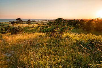 Île de Mön Danemark . Coucher de soleil à Aborrebjerg sur Jiri Viehmann