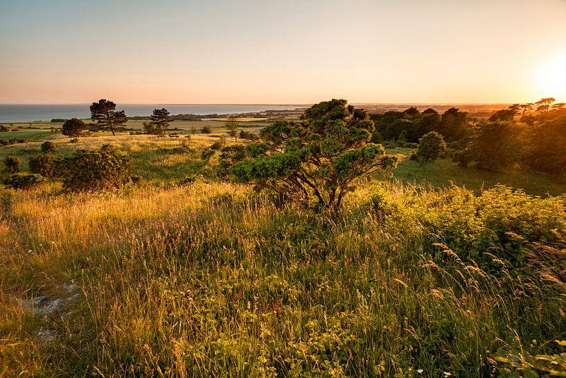 Insel Mön Dänemark . Sonnenuntergang am Aborrebjerg von Jiri Viehmann