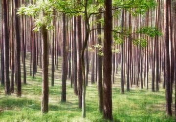 Bäume in Grün von Marcel van Balken
