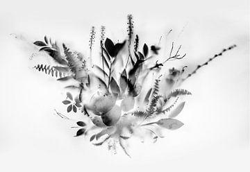 Natural Veil II van Teis Albers