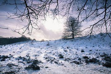 Winterlandschap 1 von Martijn van Huffelen
