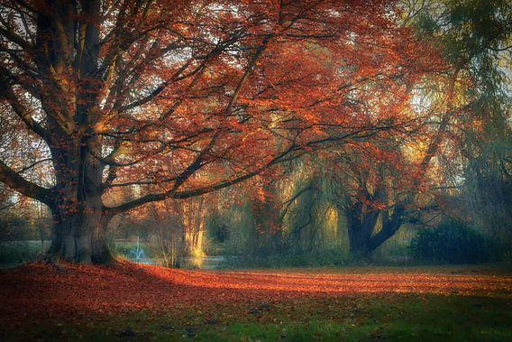 Autumn leafs van Sabine Wagner
