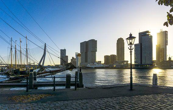 Rotterdam | Skyline en Schepen