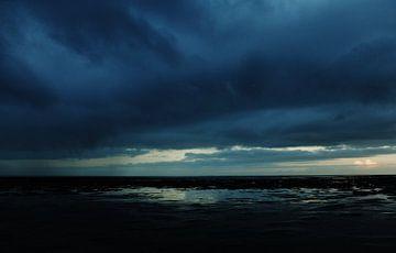 Blue van Brenda van der Zee