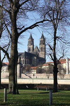 Magdeburger Dom von Heiko Kueverling