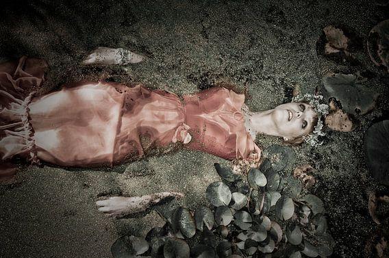 Ophelia 5 van Stefan Witte