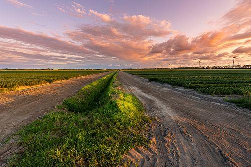 Noordoostpolder im letzten Licht von Martien Hoogebeen Fotografie