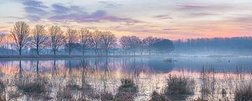 nebligen Sonnenaufgang über dem See im Winter von Henno Drop