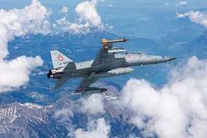 Zwitserse Luchtmacht F-5 Tiger II van