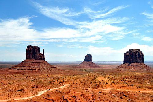 Monument Valley von Bianca Dekkers-van Uden