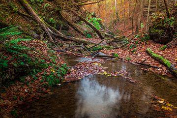 Stiller, glühender Herbst van