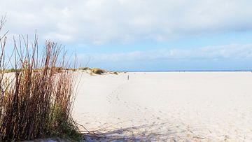 Het witte strand van Schiermonnikoog van R Smallenbroek