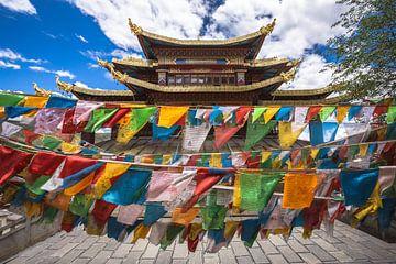 Gebedsvlaggetjes hangend voor een tempel in Shangri-La City (China). van Claudio Duarte