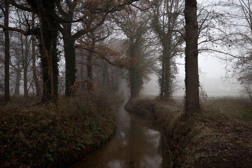 Little River von Kim Verhoef