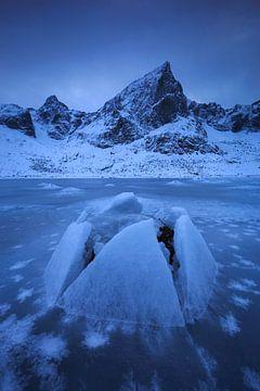 Het bevoren fjord. van Sven Broeckx