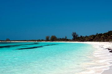 tropischer Strand von Margot van den Berg
