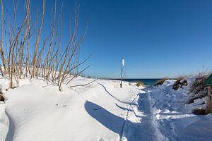 des dunes enneigées sur la plage de Juliusruh, Rügen
