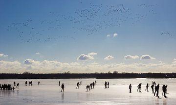Ee vlucht vogels boven de schaatsers op het bevroren Paterswoldse meer in Groningen van Marc Venema
