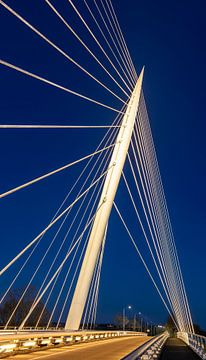 Harp brug van Calatrava, Nederland van Adelheid Smitt
