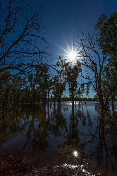 Lake Woterap in tegenlicht van Joke Beers-Blom