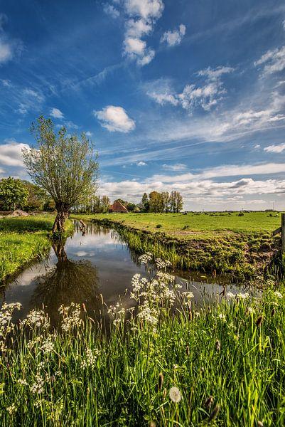 Typisch Fries landschap aan de rand van het dorpje Grou