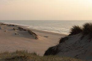 Nederlands strand van