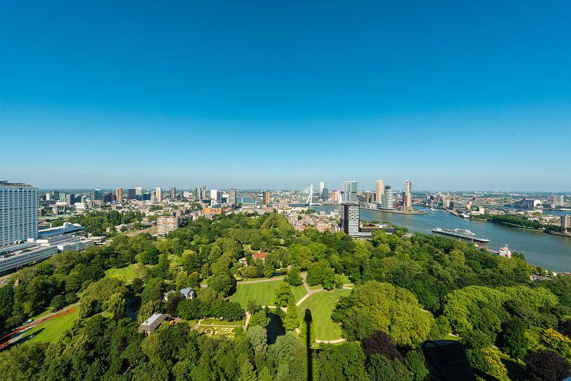Skyline Rotterdam en Erasmusbrug. van Brian Morgan