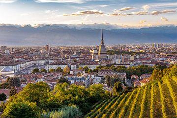 Skyline von Turin von Easycopters
