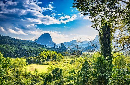 Zicht op de jungle in Laos