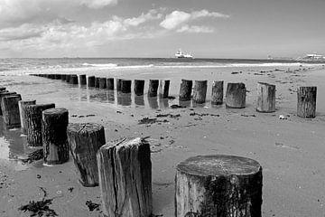 Paalhoofden op het strand van Vlissingen in zwart-wit met in de verte het Nollehoofd van Judith Cool