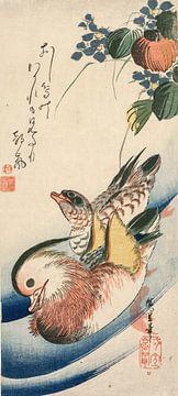 Ando Hiroshige.Mandarinente und blühende Pflanzen
