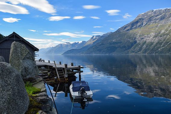 Landschap Noorwegen van Dick Hooijschuur
