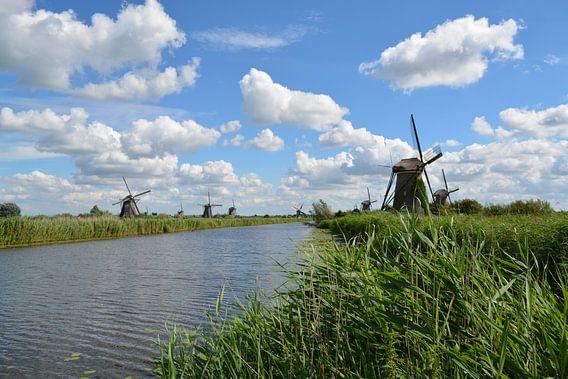 Molens bij de Kinderdijk van Hanneke Duifhuize