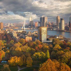 Herfst in Rotterdam van Edwin Mooijaart