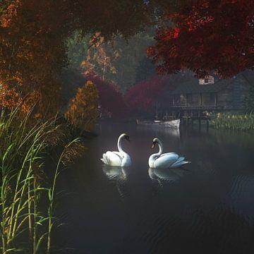 Tierreich  – Schwäne in einem Fluss in der Nähe von zu Hause von Jan Keteleer