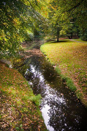 Sfeervol herfstbos met water