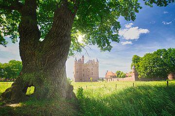 Stimmungsvolle Landschaft Schloss Doornenburg von Hilda Weges