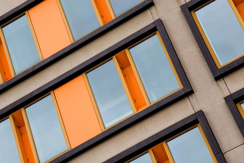 Diagonal lines van Frank Diepeveen