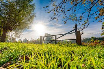 Het Nederlandse platteland op z'n mooist van Remco Piet