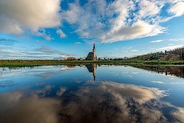 Texel Den Hoorn spiegel effect door waterplas op weiland