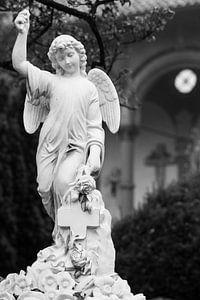 Engel in zwart wit