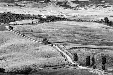 Agriturismo Podere Terrapille in Schwarz und Weiß
